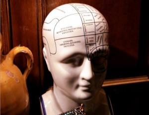 brainCN9902 (2)